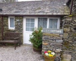 Lily Cottage 1