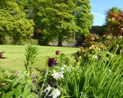 Low Jock Gardens 4