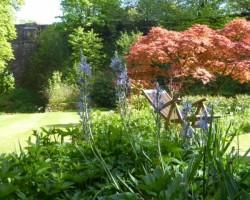 Low Jock Gardens 5