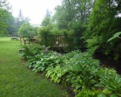 Low Jock Gardens 7